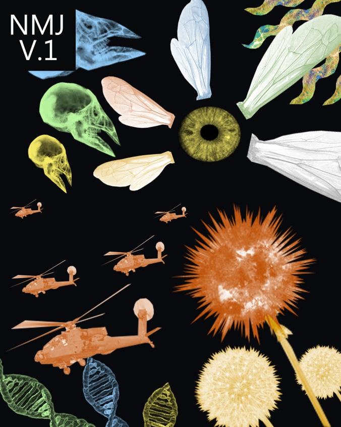 nmj-vol-1-cover