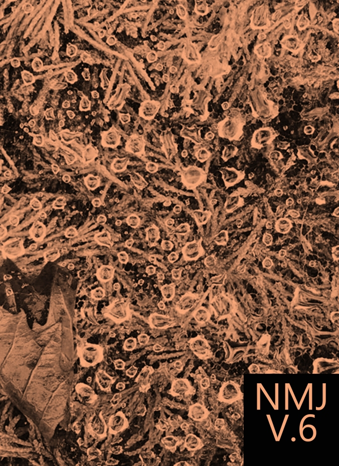 NMJ 6 Cover